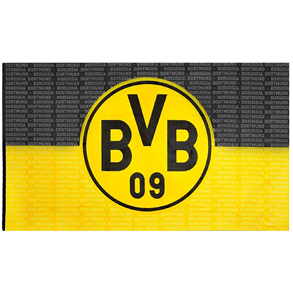 bvb hissfahne borussia dortmund fahne bvb logo 150 x 250 neu ebay. Black Bedroom Furniture Sets. Home Design Ideas