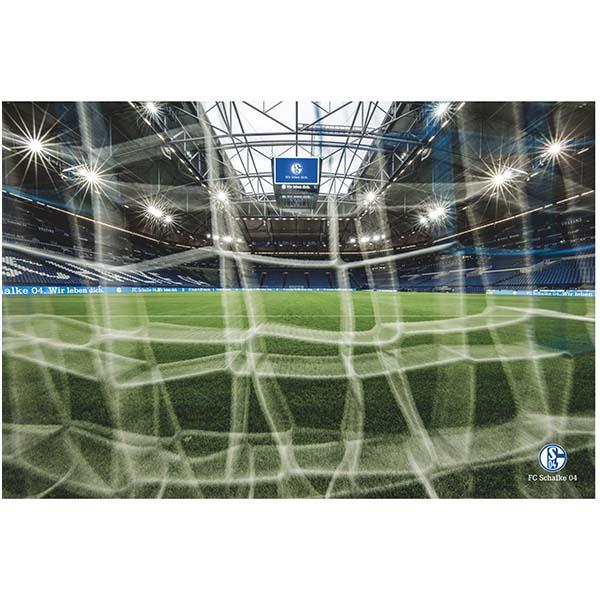 FC Schalke 04 Poster Veltins Arena Spielfeld
